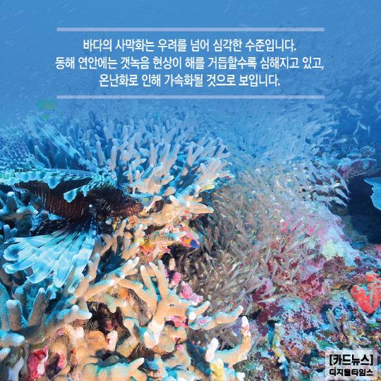 [카드뉴스] `바다 식목일`을 아시나요~